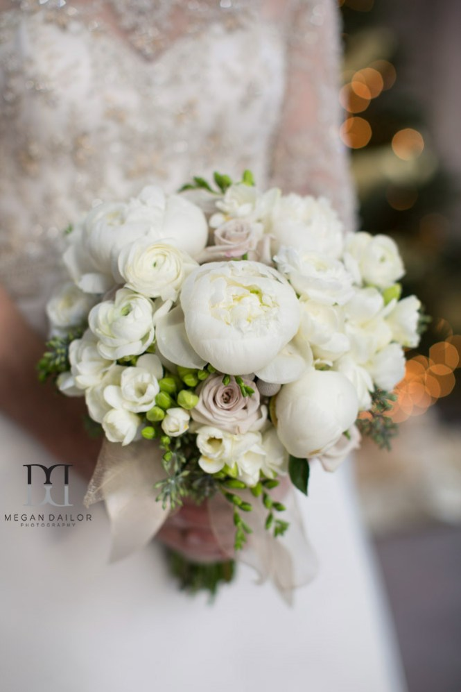 Ellicotville Enement Tammy Swales Photography 2016 Winter Weddings Rochester New York