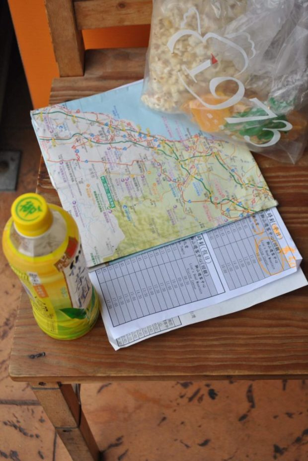 a map and bus schedule for Lion's Head Mountain
