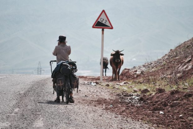 If I only could show one photo of what it was like to cycle in Kyrgyzstan, this might be it: Livestock, good roads and 12%.