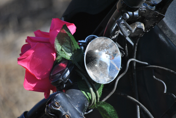 a pink plastic flower wrapped around my bicycle handlebars