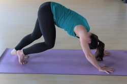 Example of pose in general yoga classes