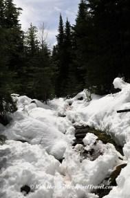RON_3314-Snowy-trail