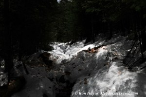 RON_3316-Snowy-trail