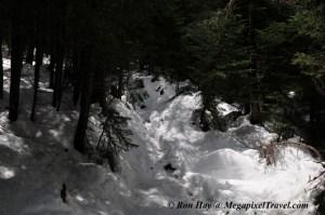 RON_3321-Snowy-trail