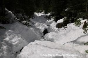 RON_3322-Snowy-trail
