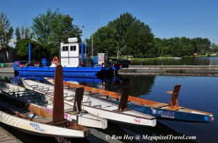 RON_3683-Dragonboats