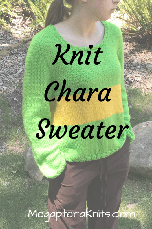 Knit chara sweater for kids