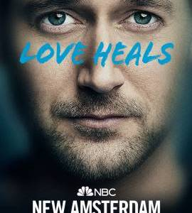 """New Amsterdam – TV Series (2018-2021)  – Also known as """"Bệnh Viện New Amsterdam""""_614ac26ae9866.jpeg"""
