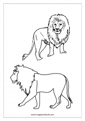 Animal Coloring Pages, Sea Animals Coloring Pages, Insects