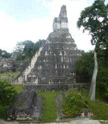 01-Tikal11
