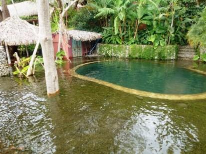 paradise flooded