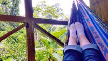 the hammock -- my favorite