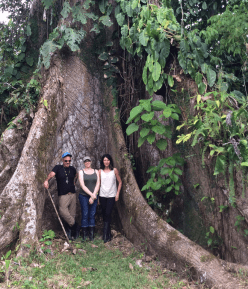 standing by a giant tree