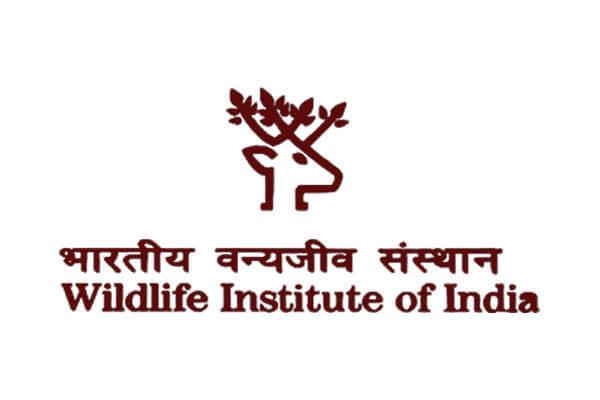 Wildlife Institute of India Recruitment