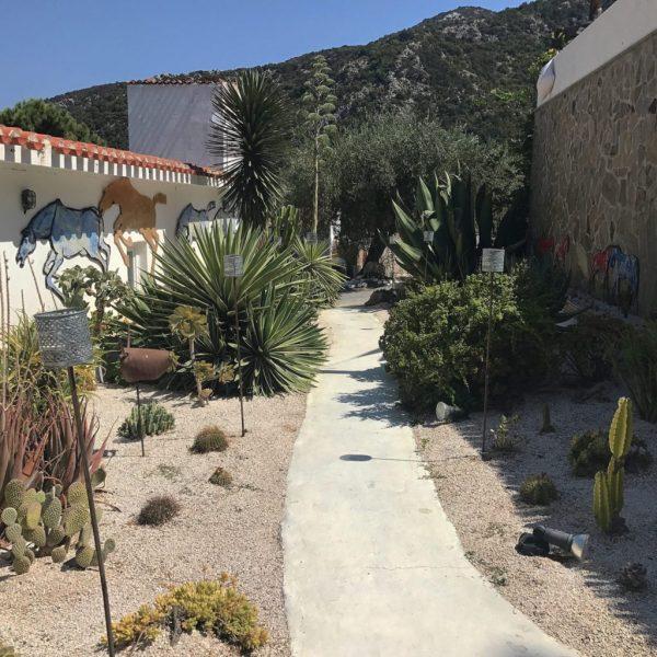 cactus garden a su gologone