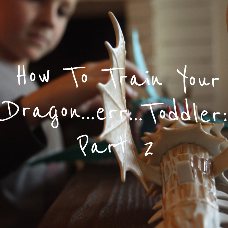 how to train your dragon:part 2