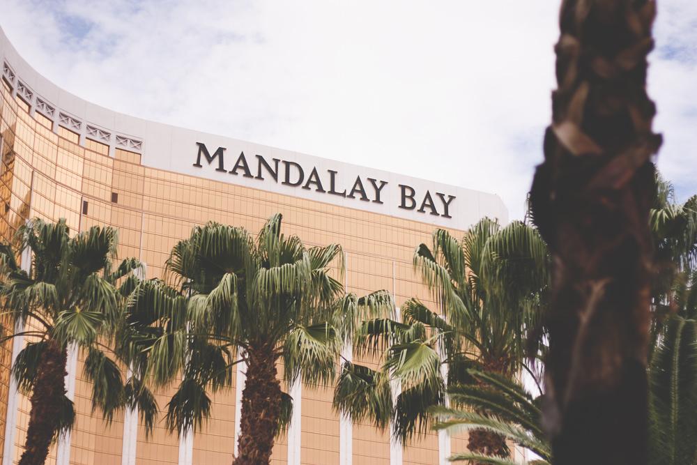 Mandalay Bay pool time | vegas vacation | meg marie and family | 2017