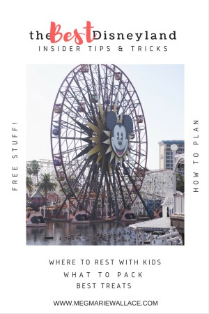 best insider Disney tips/tricks | help for planning your trip to Disneyland and California Adventure | Meg Marie Wallace | tips for kids, how to get free stuff, where to rest, places for free play, what to pack etc..