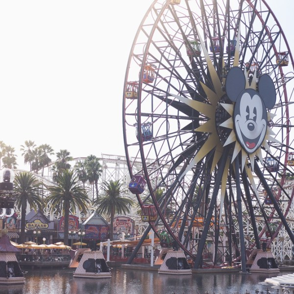 best insider Disney tips/tricks  help for planning your trip to Disney   Meg Marie Wallace