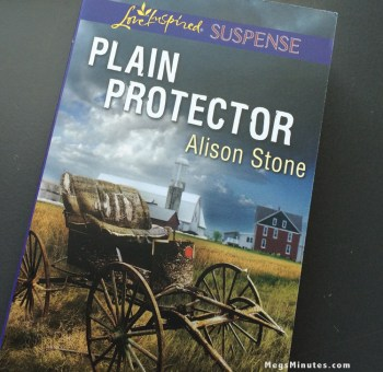 Cover of Plain Protector by Alison Stone | Read the Book Review at MegsMinutes.com