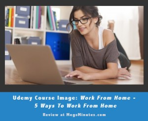 Udemy.com Course Review: Work From Home – 5 Ways To Work From Home