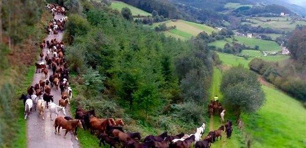 Mondoñedo celebra a partir del día 15 las fiestas más antiguas de Galicia