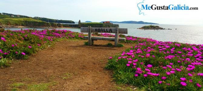 Banco de Noalla, en Punta Faxilda, otro de los mejores bancos del mundo…  en Galicia
