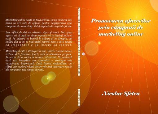 Promovarea afacerilor prin campanii de marketing online