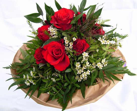 Blumen zum Muttertag  Bild EMail  Quick Tipps