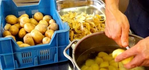Eigenschaften von Kartoffeln