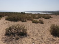 El Refugio Torrevieja (1)