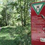 7 Naturschutzgebiet Mittleres Innerstetal IMG_1770