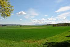 Wie wunderschön unser Nördliches Harzvorland aussieht!