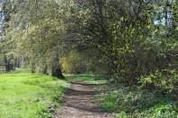 Solche Wege darf man im Schlosspark erkunden