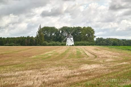 Windmühle - Nördliches Harzvorland