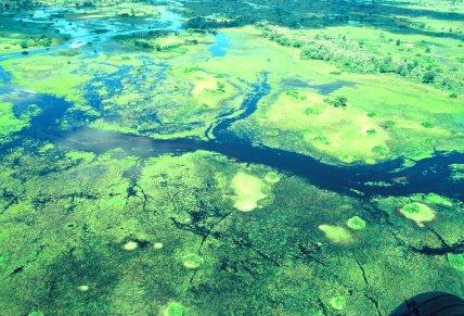 Das Okawangodelta unter Wasser