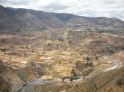 Terassen im Valle del Colca