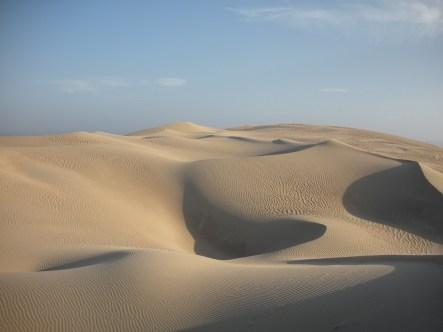 Desierto de California