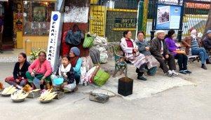 Darjeeling-2015-21