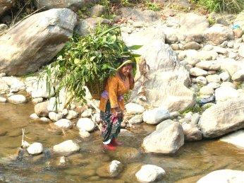 Darjeeling-2015-68