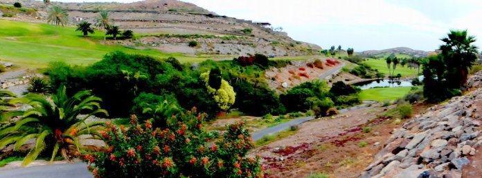 Wilde Landschaft in Salobre Golf