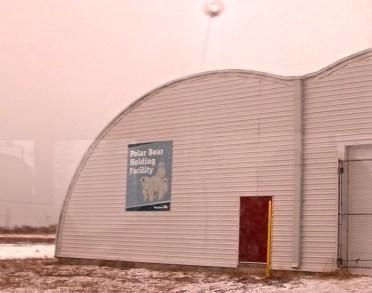 churchill-kanada-eisbaer-gefaengnis