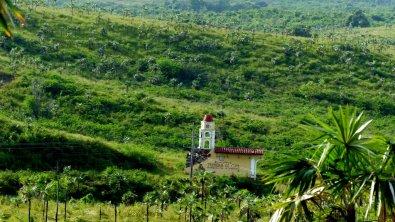 Im Land des Zuckerrohrs