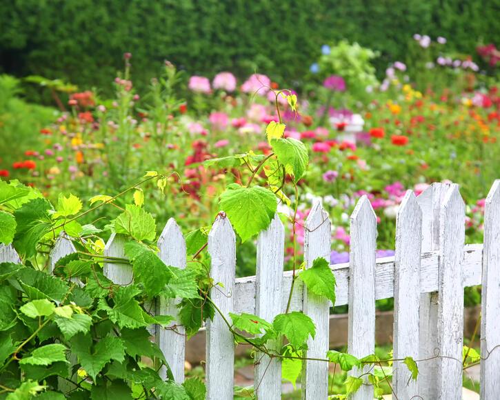 Gartenabtrennung Zum Nachbarn Eigenschaften