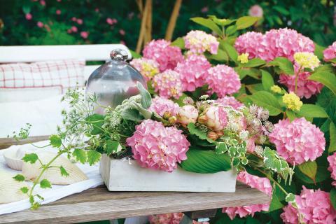 Blumenkranz Mit Hortensien