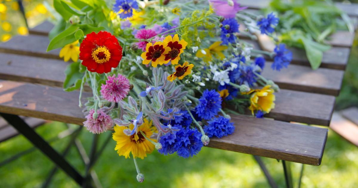 Blumenstrau Schnittblumen haltbar machen  Mein schner
