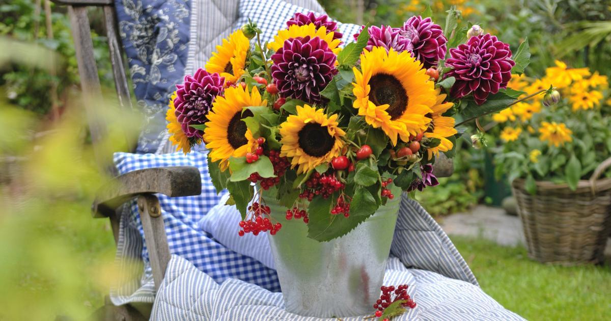 Blumenstrau  Ideen Pflege und Tipps  Mein schner Garten
