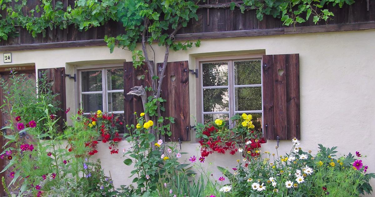 Vorgarten  Gestaltungsideen Pflanzen und Tipps  Mein