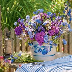 Schnittblumen frisch halten  Mein schner Garten