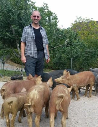 Sven und die Schweine